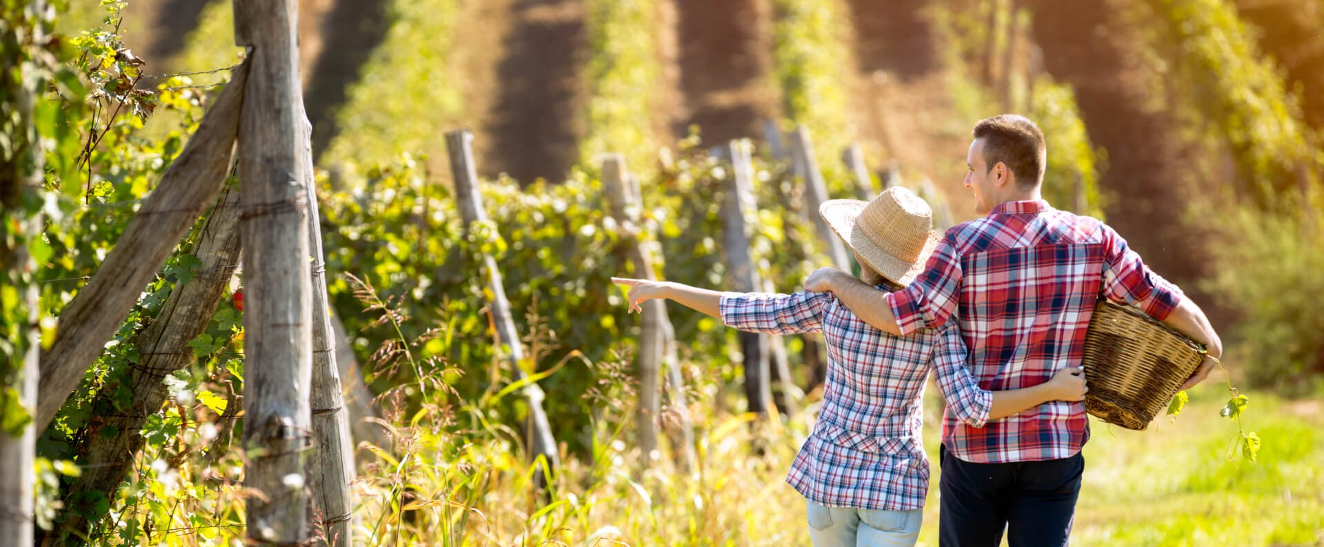 A couple wearing flannel shirts walk along a vineyard in Sonoma County, California.