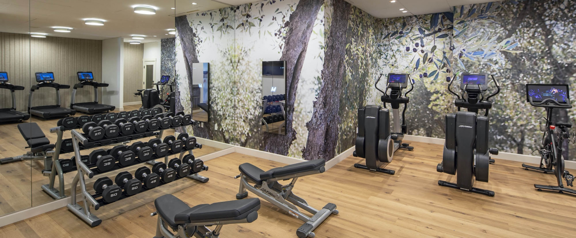 A hotel fitness center in Sonoma with a rack of free weights and rows of treadmills.