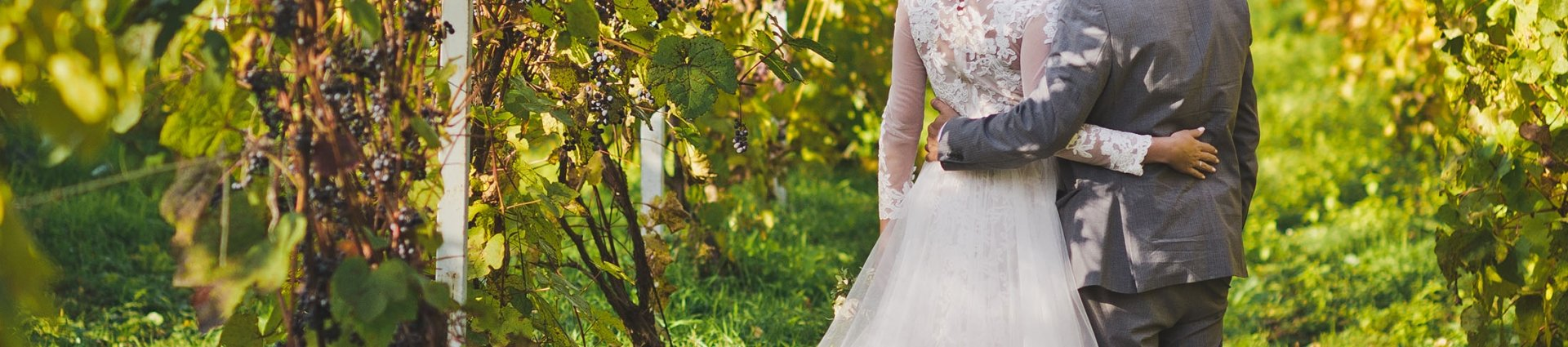 Beautiful young couple walks among the vineyards.